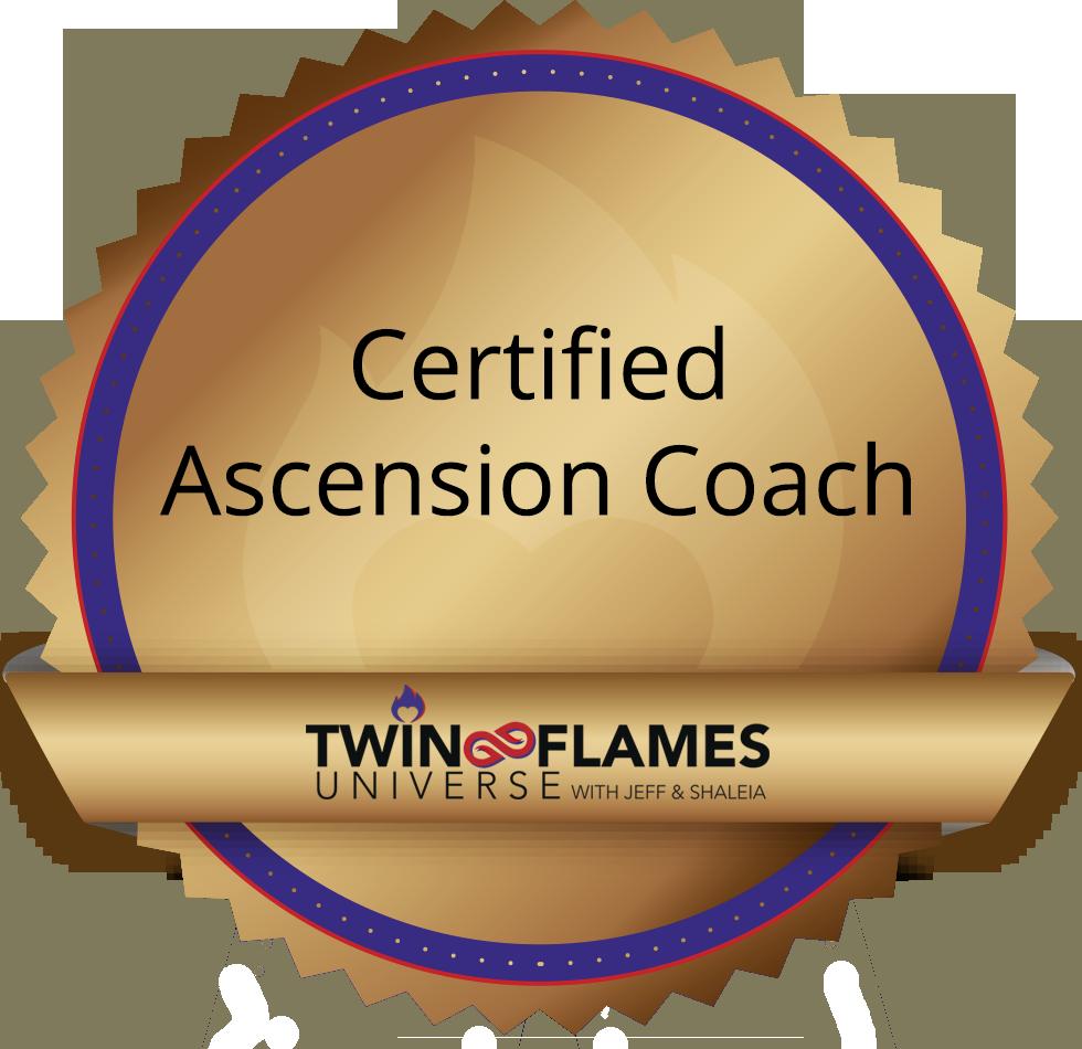 Romei Coaching Twin Flames Zertifikat